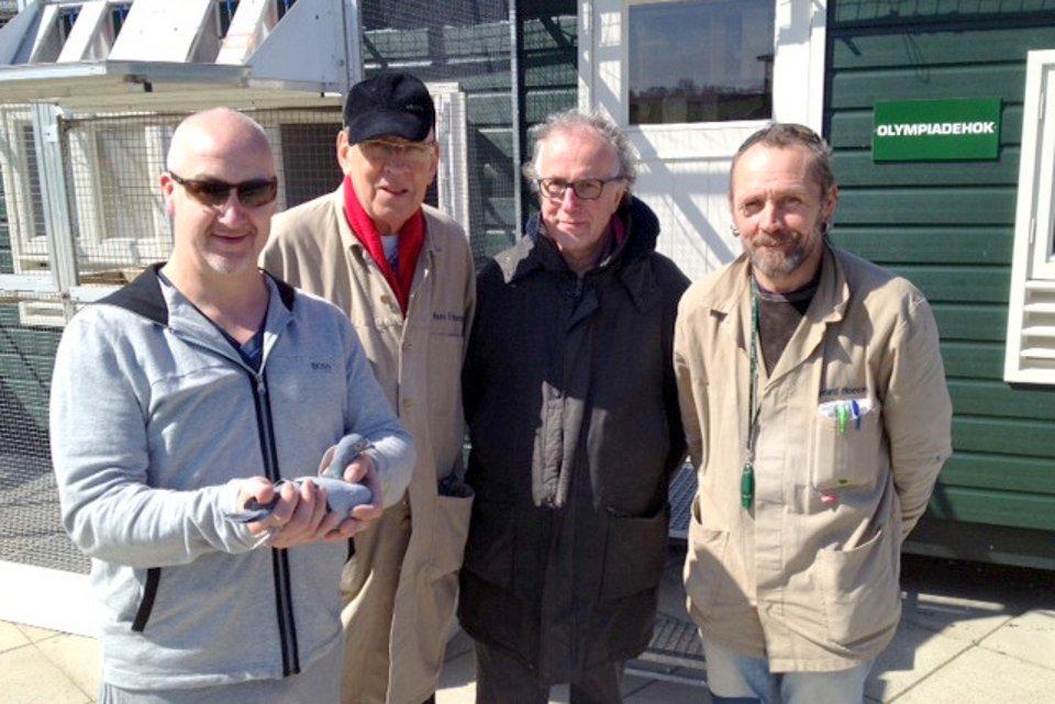 Les Green(UK), Hans, Henk Benninga, Gerard Boesveld