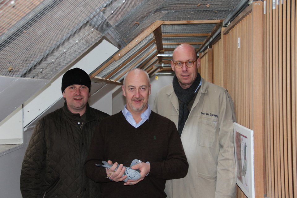 Top fanciers from England visiting Greenfield Stud