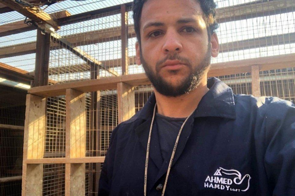 Ahmed Hamdy Shedeed