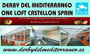 2nd Montpellier 518 km Finale Derby Del Mediterraneo