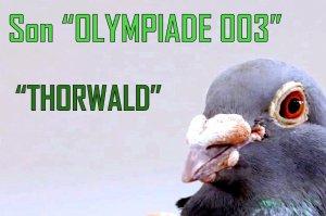 Presentation Thorwald, son of Olympiade 003